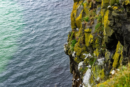 Ocean Cliffs with a swarf of seagulls during a hot spring day at the cliffs of Howth in Ireland