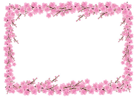 blossom background: Pink  flowers Spring background . sakura , cherry blossom ,white with copy space,isolated on white background, flowers corner border ,vector illustration Illustration