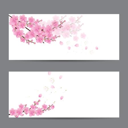 cherry blossom Sakura flowers , invitation cards 矢量图像