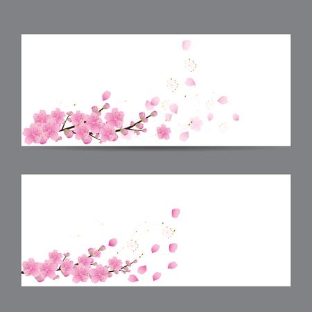 light pink: cherry blossom Sakura flowers , invitation cards , Illustration