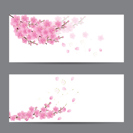 Sakura Tarjetas De Invitación Flores Fotos Retratos