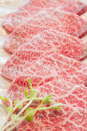 raw  meat for BBQ