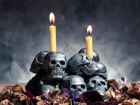 Skulls with candle burning and dried flowers on dark background.