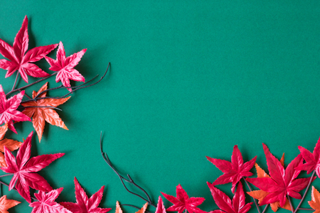 Maple leaves on green background. Free space for text