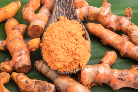Turmeric roots with turmeric powder on green leaf background.