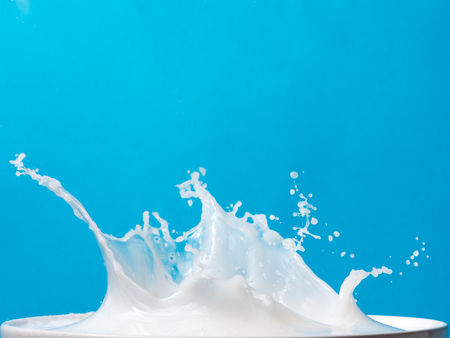 Splash of milk from a cup on blue background.