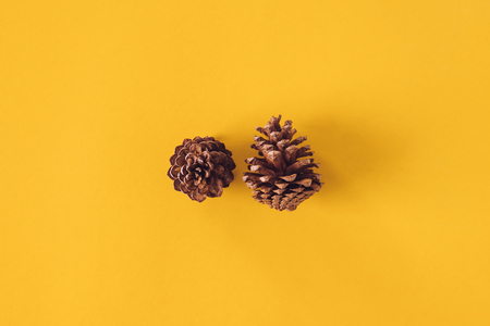 Pine cone on yellow background, Christmas decoration. Imagens