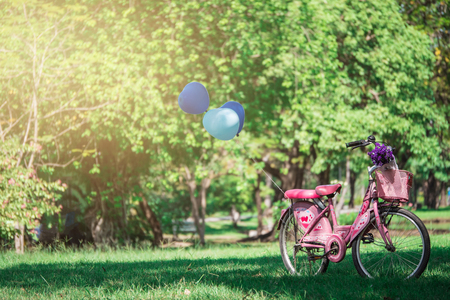 A pink bicycle and blue balloons in a shady park.