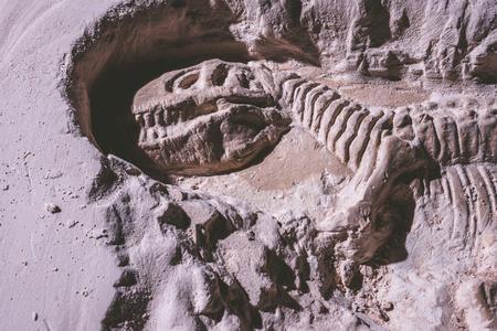 Skeleton of dinosaur. Tyrannosaurus Rex simulator in ground stone.