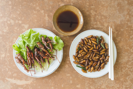 Top view of Fried insects in dish with sauce on wooden table