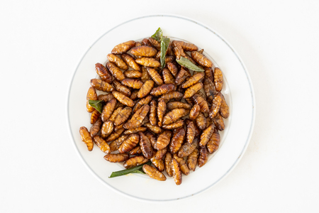 Top view of Fried insects in dish on white background