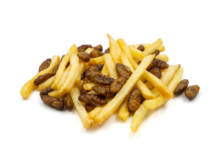 Close up of french fries with fried insects on a white background