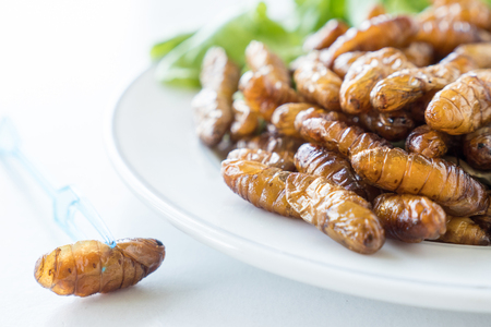 Close up of Fried insects in dish on white background. selective focus Stock Photo
