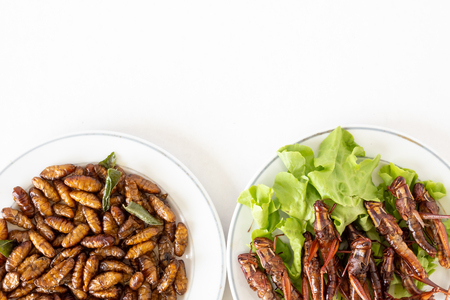 Top view of Fried insects in dish on white background. copy space