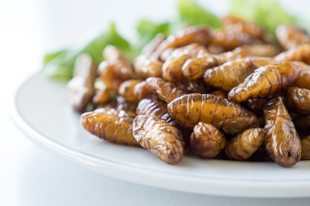Close up of Fried insects in dish on white background. soft focus