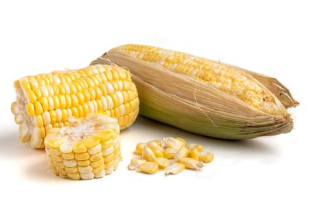 Frischer Zuckermais auf weißem Hintergrund Standard-Bild