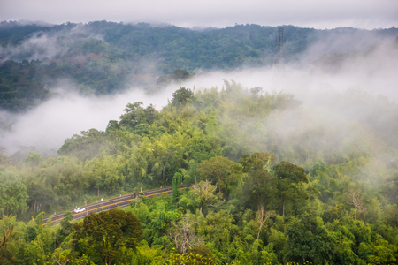Aerial view of road through forest in the fog Stock Photo