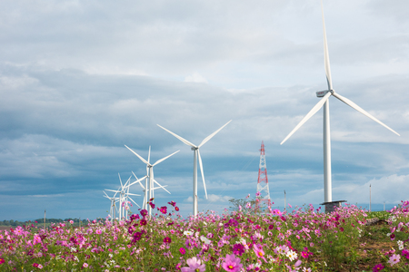 Field of cosmos flowers with wind turbines and clouds sky background. Stock Photo