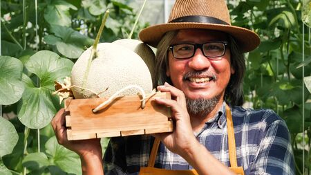 Happy farmer holding a basket of melons in a farm. 写真素材