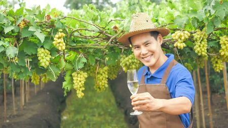Happy farmer holding a glass of wine in vineyard. 写真素材