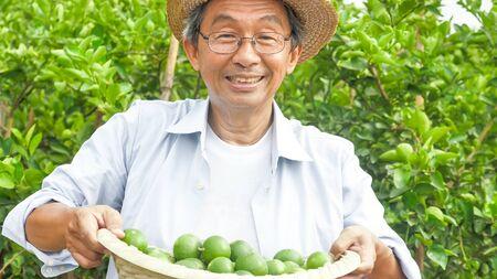 Happy farmer holding a basket of lemons in a farm.