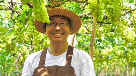 Happy farmer standing and smiling in vineyard.
