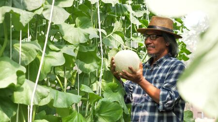 Happy farmer standing and holding melon in a farm.