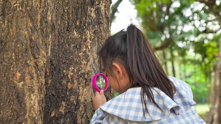 Girl using a magnifying glass for watching tree trunk at the park.
