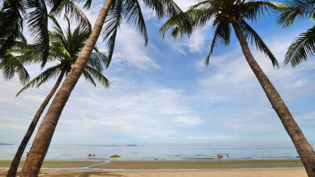 Beautiful tropical beach with palm trees and blue sky. Foto de archivo