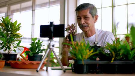 Senior gardener man selling beautiful plants on social media by streaming live from his shop. Foto de archivo