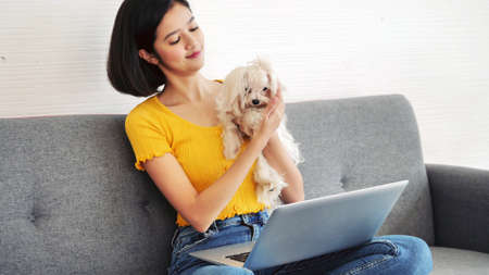 Asian woman working on a laptop computer and shihtzu dog sitting on a sofa at home