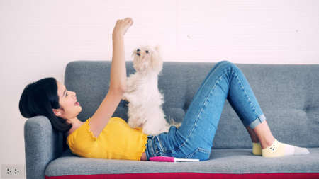 Beautiful woman playing with shihtzu dog on a sofa at home