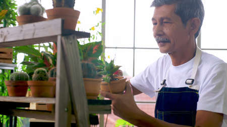 Happy senior gardener man taking care of his plants in greenhouse.