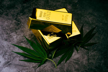 The cannabis plant with gold ingots. Gold bars with marijuana leaves.