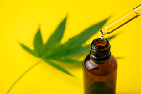 Cannabis oil in the dropper bottle with green leaves on yellow background. Alternative medicine concept.