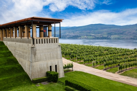 Winery terrace overlooking a modern vineyard and Lake Okanagan in British Columbia, Canada