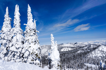 whitefish: Winter landscape on Big Mountain in Whitefish, Montana, overlooking Glacier National Park, with copy space Stock Photo
