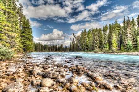 forest river: HDR rendering of the Bow River flowing through the Canadian Rockies in Banff National Park. Stock Photo