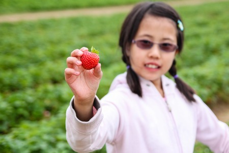 deliberate: Cute Asian girl showing off a strawberry picked at a berry farm. Deliberate focus on the berry and shallow depth of field on girl and background.