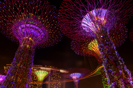 adulation: The Supertree Grove comes alive at Gardens by the Bay in Singapore. The nightly dazzling myriad of light and laser displays illuminate the sky and the Marina Bay Sands Hotel in the background. Editorial