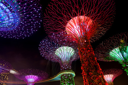adulation: The Supertree Grove comes alive at Gardens by the Bay in Singapore. The nightly dazzling myriad of light and laser displays illuminate the sky in Marina Bay.