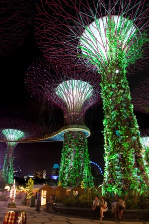 adulation: Visitors gather around the Supertree Grove at Gardens by the Bay in Singapore. The nightly dazzling myriad of light and laser displays is one of the major attractions in Marina Bay. Editorial