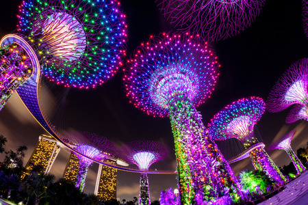 displays: The Supertree Grove comes alive at Gardens by the Bay in Singapore. The nightly dazzling myriad of light and laser displays illuminate the sky.