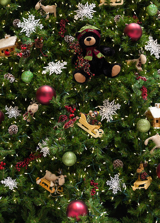 Close up of Christmas tree with ornaments of baubles, snowflakes, teddy bears, sleighs, gingerbread house, pine cones and lights.