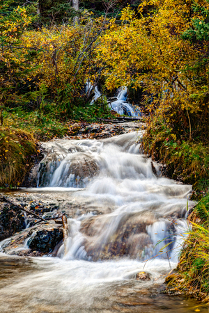 Cascading stream at Big Hill Springs Provincial Park near Calgary in Alberta. A favorite park for hiking and picnics, its series of small waterfalls and streams flow year-round over rocky tufa mounds covered with lush shrubs and grasses. Stock Photo