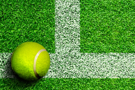 High angle view of tennis ball on grass court with white line marking and copy space. Line represents tennis court boundary sidelines, service line, or baseline.