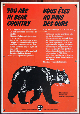 BANFF, CANADA - July 8, 2011: Bear warning sign posted at Banff National Park campground in Alberta, Canada, reminding visitors of black bears in the area while hiking or camping.