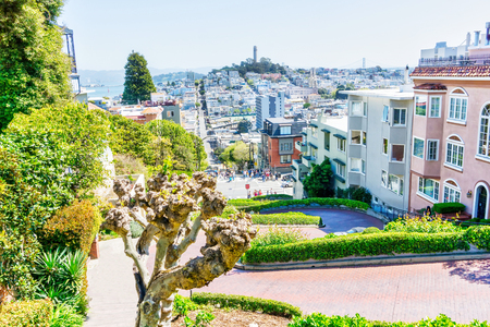 High-angle view of San Francisco skyline at Lombard Street toward San Francisco Bay in downtown North Beach community showing Fishermans Wharf and Coit Tower.