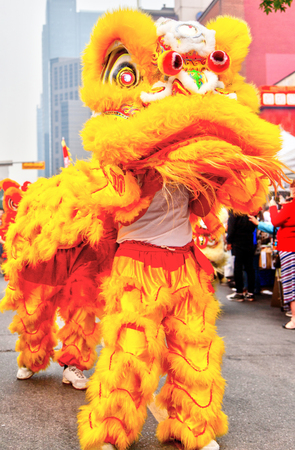 Prancing Chinese cultural lion dance performance in Calgary Chinatown in Canada.