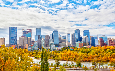 Calgary downtown skyline during Fall or Autumn colors with Bow River surrounding the financial district and its skyscrapers. As viewed from Sunnyside Bank Park at Crescent Heights.